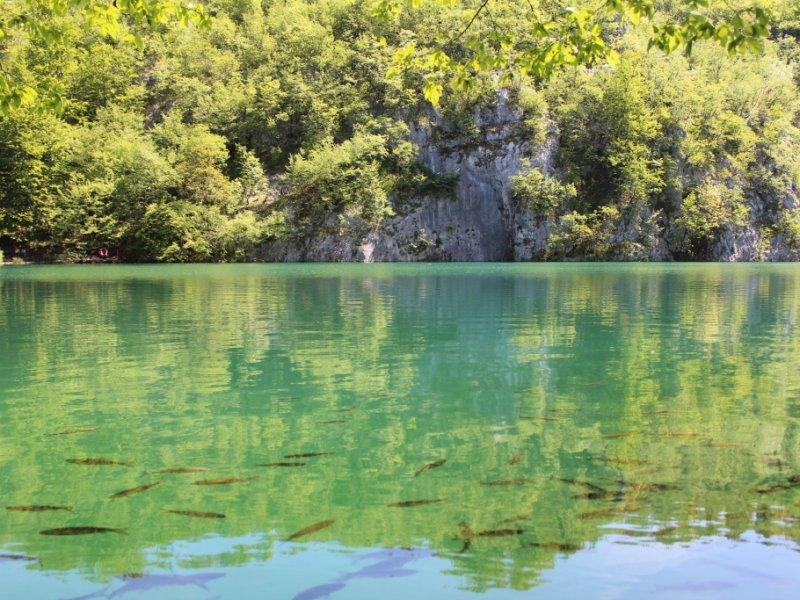 Parque Nacional Plitvice - crédito: Patricia Dozzi