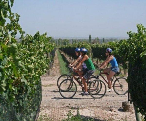 Bike por Bodegas de Lujan