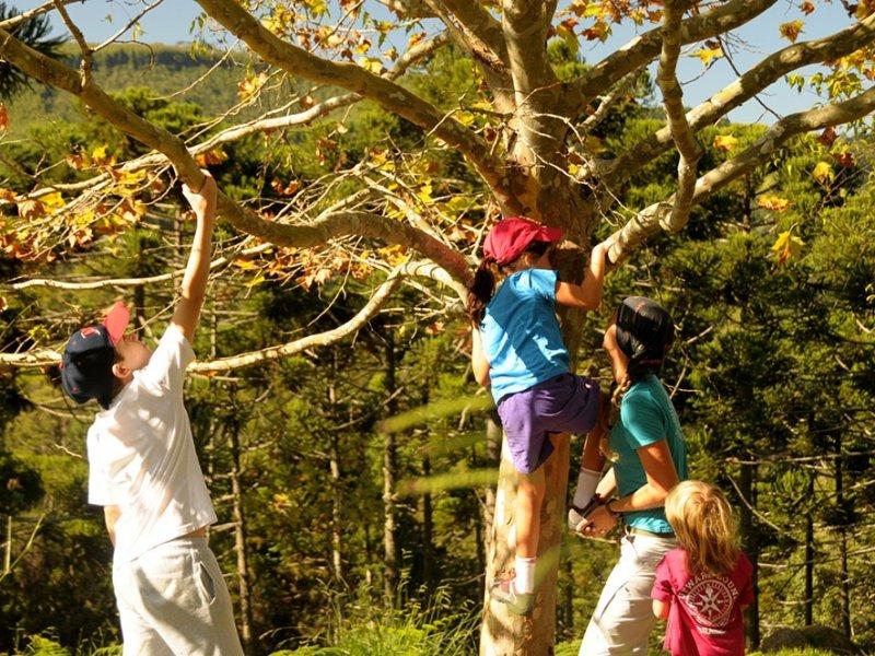 Expedição OBB Pais e Filhos