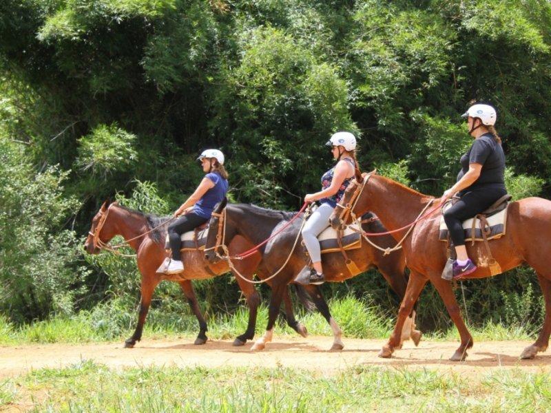 Hotel Fazenda Parque dos Sonhos - Diversas Atividades Inclusas