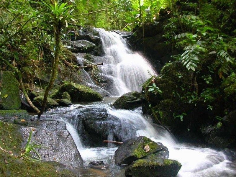 Trilhas para Cachoeiras - Paraíso EcoLodge - Intervales