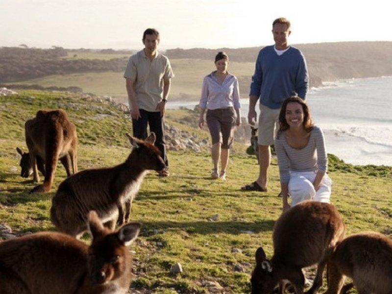 Kangaroo Island - Adelaide