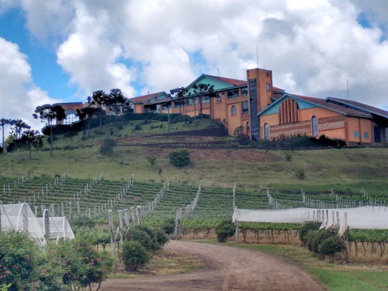 Vínicola Villa Francioni