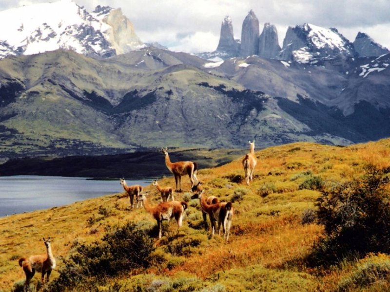 Torres del Paine - Laguna Azul - Foto: Claudia Ribeiro