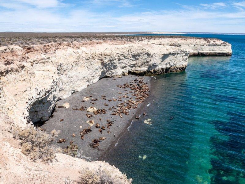 peninsula valdes - patagonia - ruta 40