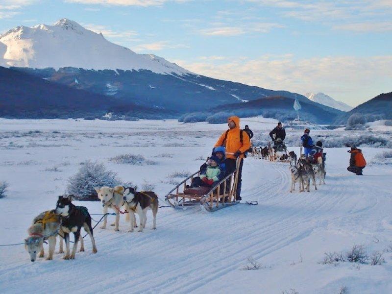 Treno puxado por Huskies em Ushuaia (Terra do Fogo)