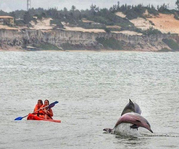 Baía dos Golfinhos - Praia da Pipa