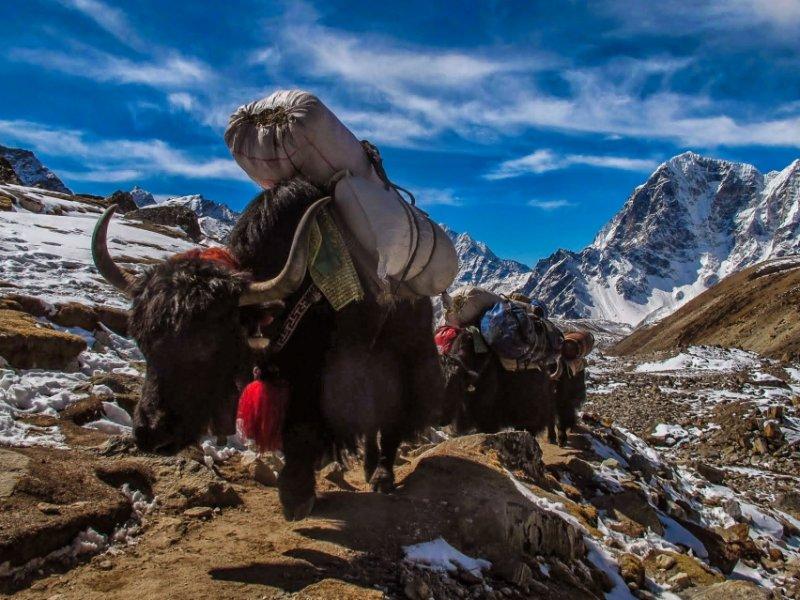 Encontro de Montanha – Grandes Expedições 2019