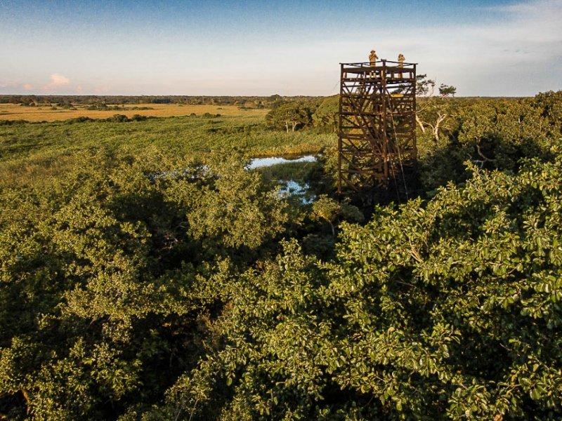 Torre de Observação