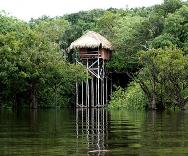 Bangalô Vista Rio - Juma Lodge