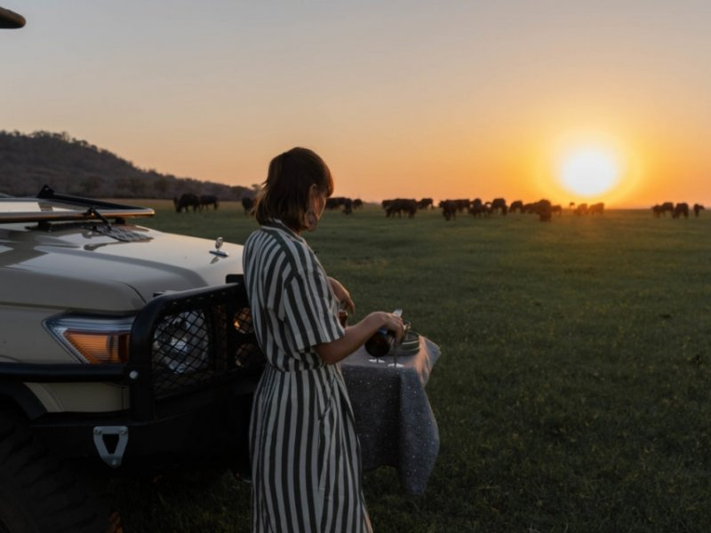 Zimbabwe Imperdível by African Bush Camps