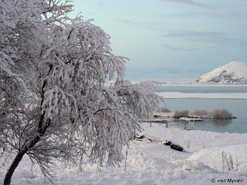 Região do Lago Myvatn - crédito: Visit Myvatn