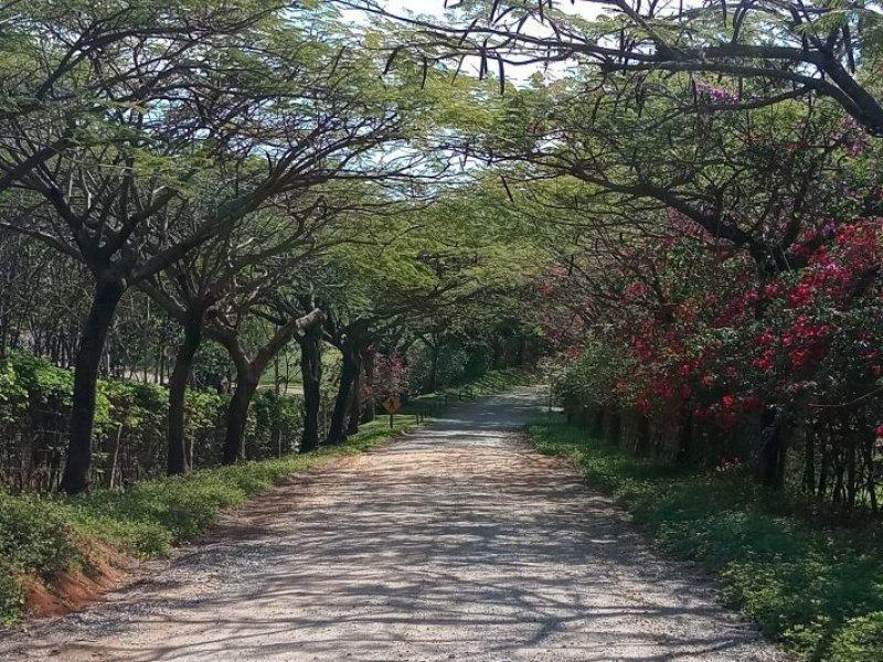 Itupeva - Cicloturismo pelo Circuito das Frutas