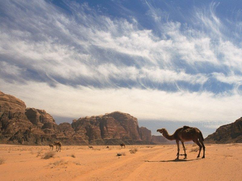 Wadi Rum - crédito: Visit Jordan