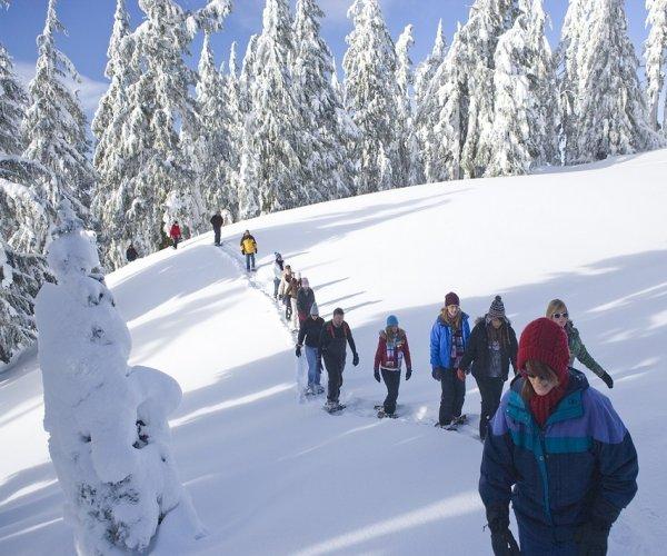 Caminhada com Raquetes de Neve em Ushuaia (Terra do Fogo)