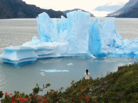 Patagonia Completa - El Calafate, Torres del Paine, El Chalten e Ushuaia