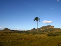 FÉRIAS DE JULHO - Chapada dos Veadeiros - São Jorge e Alto Paraíso
