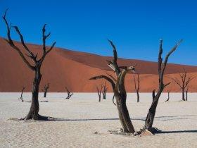 Sul da Namíbia e África do Sul