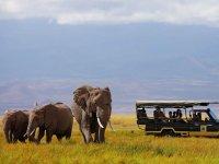 Quênia - Sky Safari