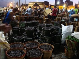Pará - Descubra Belém e a Gastronomia Paraense