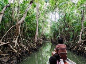 Pará - Descubra a Ilha de Marajó