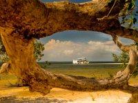 Alter do Chão a Bordo - Jornada Sensorial pela Amazônia