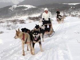 Patagônia Neve - Aventuras em El Calafate e Ushuaia