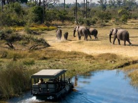 Botswana - Uma Aventura com Estilo - Chobe, Savute e Delta do Okavango