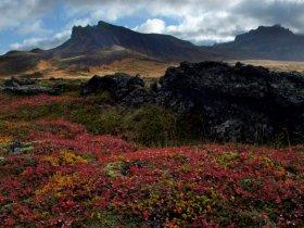 Passeio opcional Islândia - Península de Snaefellsnes