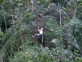 REVEILLON - Amazônia - Juma Amazon Lodge com Pernoite na Selva