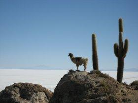 Peru e Bolívia - Machu Picchu, La Paz e Salar de Uyuni