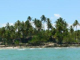 REVEILLON - Ilha de Boipeba Completo