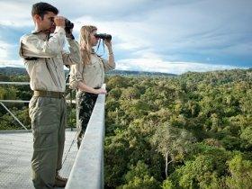 Amazônia - Cristalino Jungle Lodge - Um Santuário Amazônico
