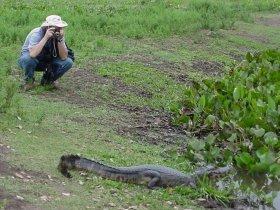 Pantanal Sul - Fazenda Aguapé