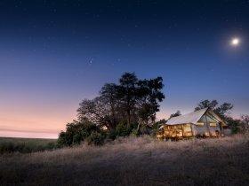 Botswana Maravilhosa by African Bush Camps